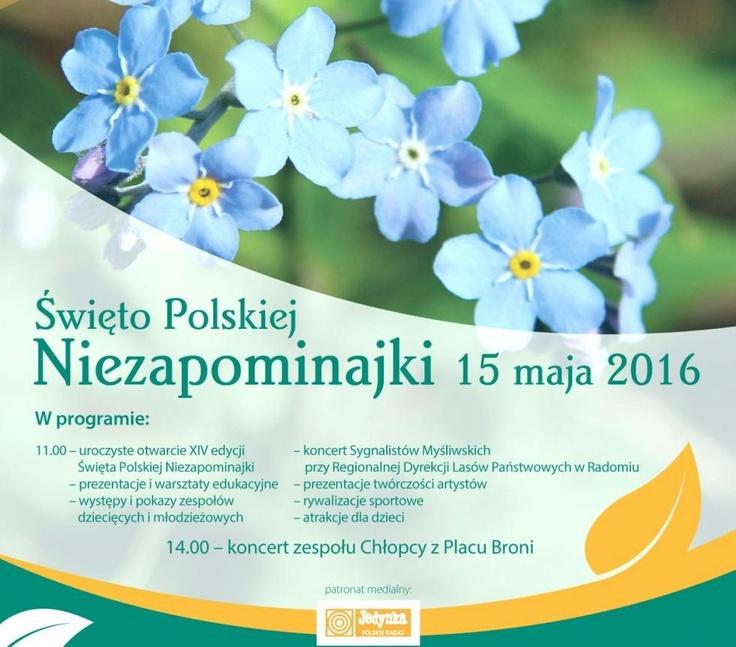 Święto Polskiej Niezapominajki 2016